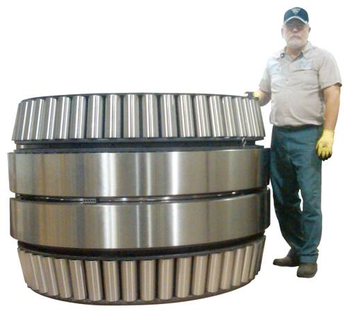 Extra Large Roller Bearings