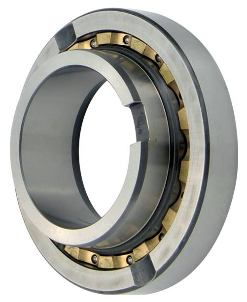 Notched Deep Groove Ball Bearing Services
